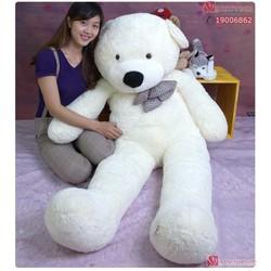 Gấu bông khổng lồ 1.8m Boyds Trắng