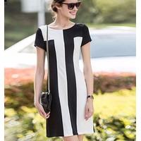 Đầm công sở đen trắng CS293