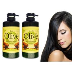 Combo Dầu Gội Và Dầu Xả Olive