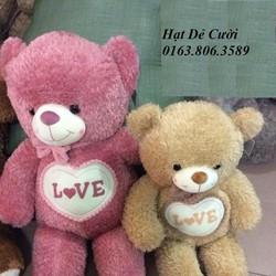 Gấu Bông Teddy cột nơ