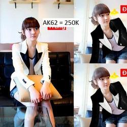 Áo khoác vest blazer Hàn Quốc AK62