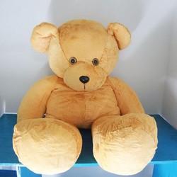 Gấu Valentine