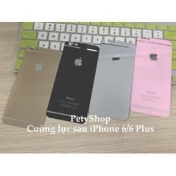 Dán cường lực mặt sau iPhone 5 5S 6 6S 6 6S Plus