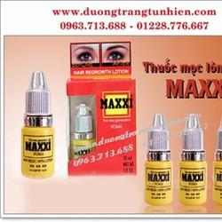 THUỐC MỌC, RẬM LÔNG MÀY MAXXI