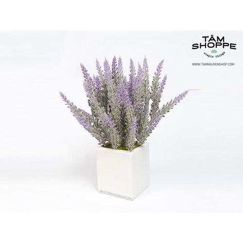 Chậu vuông trắng Lavender
