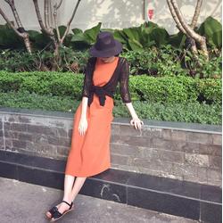 Đầm Suông Chữ A Xinh Xắn Như HH Thu Thảo - D2663