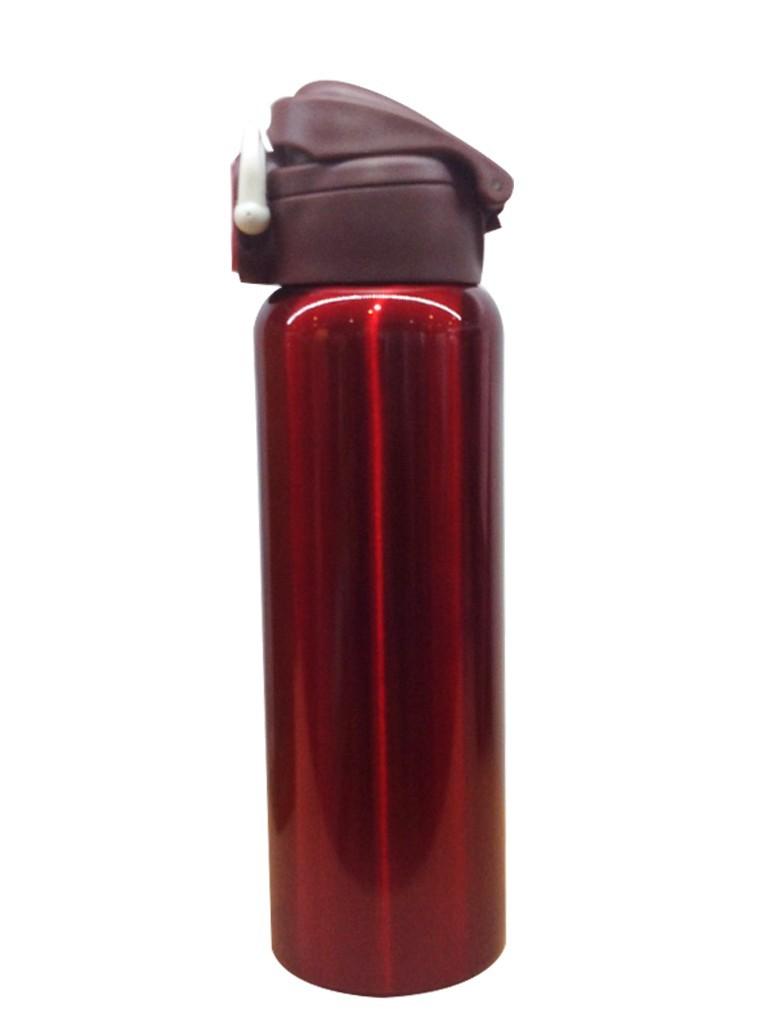 Bình giữ nhiệt inox 600ml Carlmann QE351 2