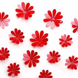 Set 12 bông hoa 3D trang trí
