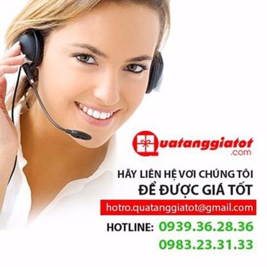Balo Laptop DP0381DEDO1 1