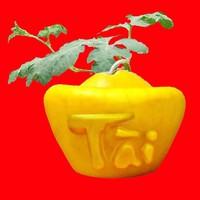 Dưa Hấu Thỏi Vàng Chữ Việt Loại 1,7kg - GIÁ 1 CẶP
