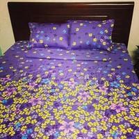 Bộ ga giường cotton tím nhí 1m6 x 2m TTSHOP
