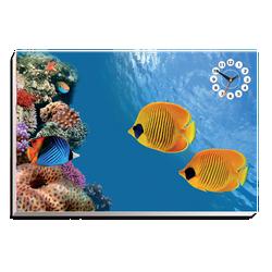 Tranh đồng hồ Tictac - Hồ thủy sinh