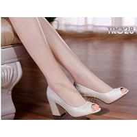 Giày cao gót công sở nữ thời trang C043T