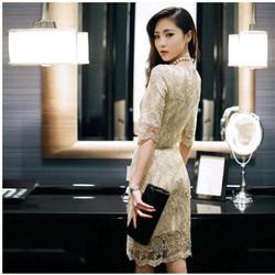 Đầm đẹp như hình - Đầm Ren Ánh Kim Tuyệt Đẹp