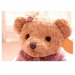 Gấu teddy bear girl size S- 45cm
