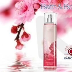 Fine Fragrance Mist - Xịt toàn thân - 236ml CHERRY BLOSSOM