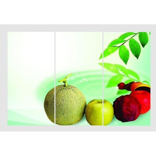 Tranh ghép nghệ thuật trái cây TNT24