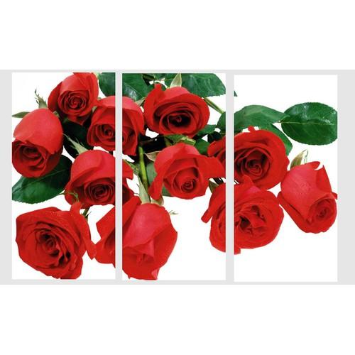 Tranh nghệ thuật hoa hồng đỏ TNT25