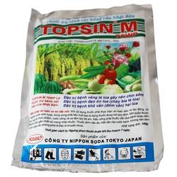 Thuốc trị bệnh TOPSIN M 70WP 100g
