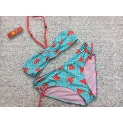 Đồ bơi bikini hình dưa hấu - ĐB1613