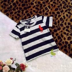 Áo thun Polo sọc xanh đen