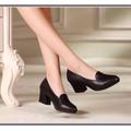HÀNG CAO CẤP LOẠI I - Giày nữ thời trang
