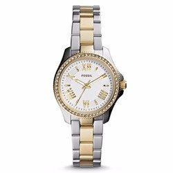 Đồng hồ Fossil Cecile Two-Tone
