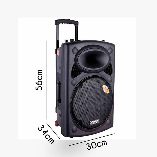 Loa Kéo Temeisheng 297 loa bass siêu trầu 9