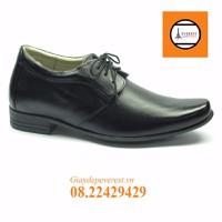 Giày da nam GTCC05