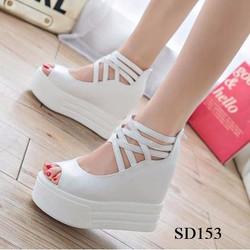 SD153T - Giày đế xuồng nữ cá tính