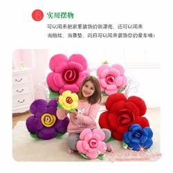 Hoa Hồng bằng bông món quà tặng ý nghĩa