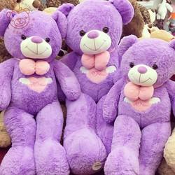 Gấu bông Teddy tím ngực tim 90cm