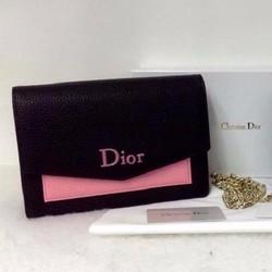 Túi xách Dior phối màu