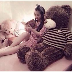 Teddy áo len Choco size 1m4