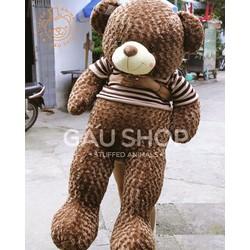 Teddy áo len Choco size 1m7