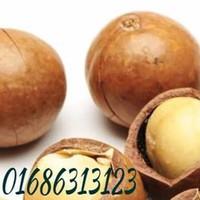 Hạt macca nhập khẩu - Macadamia nuts