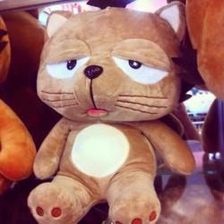 Gấu bông mèo lười DINGA 60cm