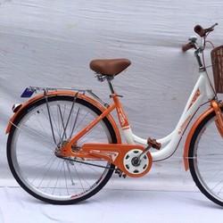 Xe đạp nhập ngỗng TT313