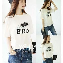 Áo thun nữ bird HA351