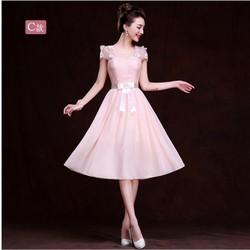 Đầm dạ hội hồng