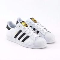Giày Adidas Superstar Mũi Sò