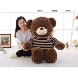 Gấu bông teddy Cao 1m5  Quà Ý Nghĩa Giá rẻ nhất thị trường