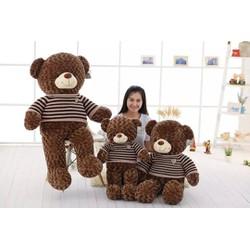 Gấu bông Teddy size bự 2m2 - Quà tặng Ý Nghĩa  Giá rẻ nhất thị trường