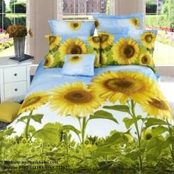 Bộ drap coton cao cấp hoa hướng dương