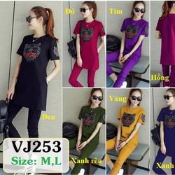 Bộ quần áo VJ253