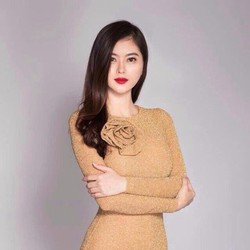 Đầm Body Kim Tuyến Tay Dài