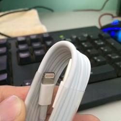 Sạc cáp Lightning cho iPad iPhone iPod chính hãng apple