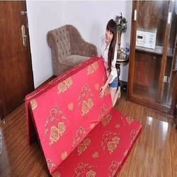 Nệm PE Hàn Quốc vải gấm Valize 120x195x9cm