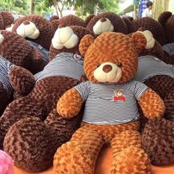 Gấu Bông Teddy 1,2m
