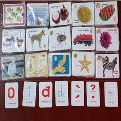 Bộ thẻ học thông minh 16 chủ đề, gồm 416 thẻ